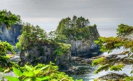 Flatterie de cap sur Washington Coast du nord Photographie stock libre de droits