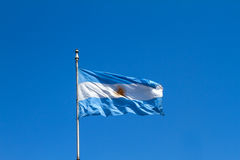 Flattering Argentinian Flag Royalty Free Stock Photos