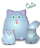 Flaumige Mutterkatze mit zwei Kätzchen Stockfotos