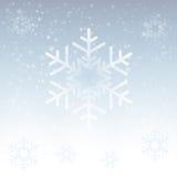 Flaumige weiße Schneeflocke des Vektors auf grauem Hintergrund Stockfoto