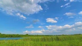 Flaumige weiße Wolke über dem See stock video