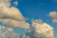 Flaumige Wolken Stockfotos