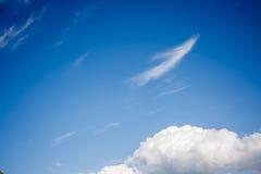 Flaumige Wolken im blauen Himmel Lizenzfreies Stockfoto