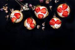 Flaumiger Buttermilchkekse Shortcake mit roten reifen Erdbeeren und frischer Schlagsahne auf einem schwarzen Hintergrund Lizenzfreie Stockfotografie
