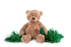 Flaumiger Teddybär Lizenzfreies Stockbild