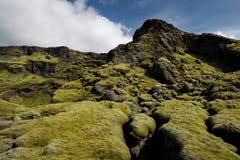 Flaumiges grünes Moos auf Felsen, Island Lizenzfreies Stockfoto