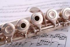 Flauta 1 fotografía de archivo libre de regalías