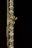 Flauta Fotografía de archivo