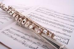 Flauta 2 fotos de archivo libres de regalías