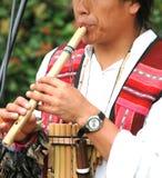 Flauta de bambú Fotografía de archivo
