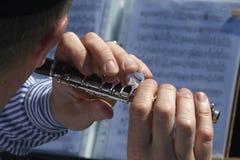 Flauta de flautín foto de archivo