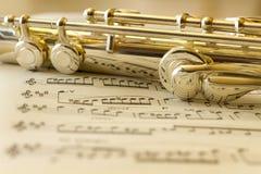 Flauta de oro Fotografía de archivo