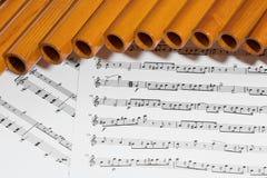 Flauta e notas da bandeja Imagens de Stock Royalty Free