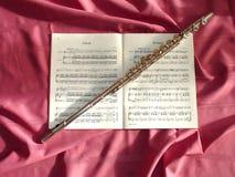 Flauta mágica Foto de archivo
