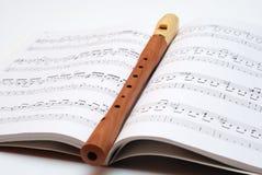 Flauta mágica Imagem de Stock