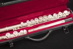 Flauta mágica Fotos de Stock Royalty Free