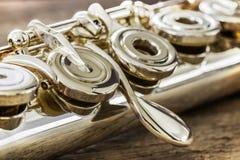 Flauta moderna del concierto Imagen de archivo libre de regalías