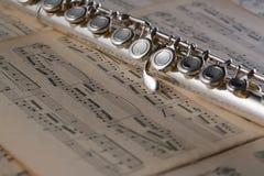 Flauta no fundo velho das notas para o gráfico e o design web, fundo moderno Conceito do Internet Fundo na moda para o Web site fotografia de stock royalty free