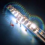 Flauta sob a construção Fotografia de Stock Royalty Free