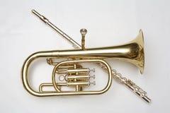 Flautas del extremo del cucurucho Fotografía de archivo libre de regalías