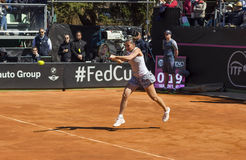 Flavia pennetta brindisi fed cup Royalty Free Stock Photos