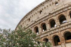 The Flavian amphitheatre 6 - the Colosseum, Rome, Italy royalty free stock photos