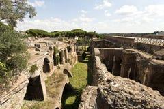 Flavian Amphitheatre Stock Images