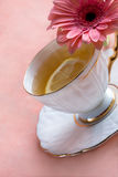 Flavored tea in a white porcelain Stock Photography
