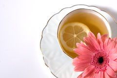 Flavored tea in a white porcelain Royalty Free Stock Photo