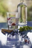 Flavored vodka ingedients Stock Image