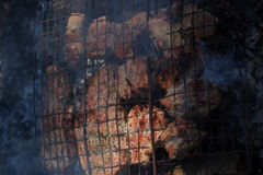 Flavorful meat on the grill with smoke in forest Stock Photography