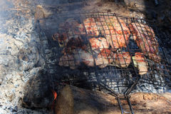 Flavorful meat on the grill with smoke in forest Royalty Free Stock Photos
