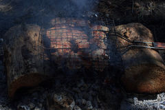 Flavorful meat on the grill with smoke in forest Royalty Free Stock Images