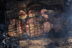 Flavorful meat on the grill with smoke in forest Stock Images