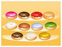 Flavors of donuts Stock Image
