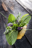 Flavors Of Herbs Stock Photo