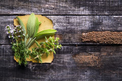 Flavors Of Herbs Stock Photos