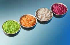 Flavoured sea salt Stock Photography