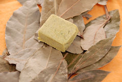 Flavouring cube and laurel leaves Stock Images