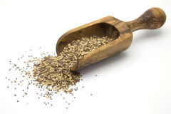 Flax, chia and sesame seeds in wooden scoop Stock Photography