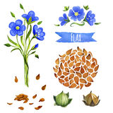 Flax, hand-painted watercolor set Royalty Free Stock Photography