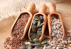 Flax, pumpkin and sunflower seeds Stock Photos