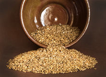 Free Flax Seed Royalty Free Stock Image - 28128586