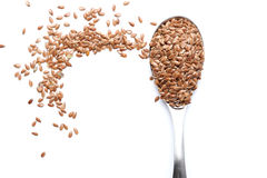 Free Flax Seed Royalty Free Stock Photography - 31177517