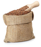 Flax seed in bag with wooden scoop on white Royalty Free Stock Images