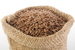 Linenseed Stock Photography