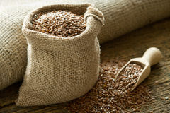 Linen seed Stock Photography