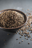 Flax seed Stock Photography