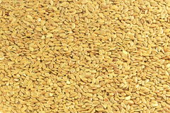 Flax seed closeup as background Royalty Free Stock Images