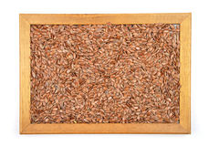 Flax seed in frame Stock Photo